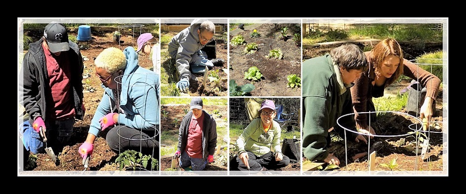 Garden Collage with people